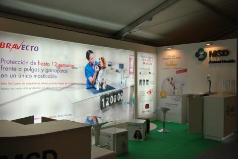 portfolio-stand-1024x685