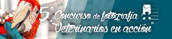 XV Congreso Andaluz de Veterinarios